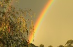 "under the rainbow (""), di brenda94"